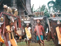 Palawa and Toraja of Indonesia