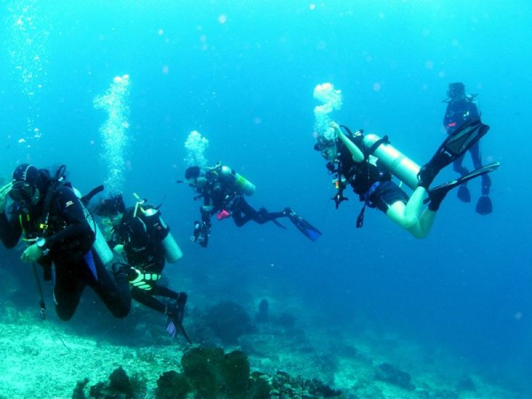 Scuba diving in Sulawesi