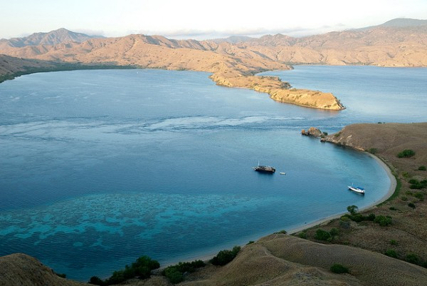 The Komodo Island in Indonesia